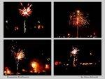 fireworks fireflowers - panel