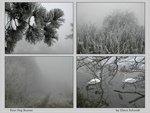 four fog scenes