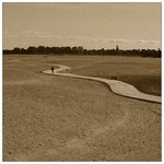 curves on sand